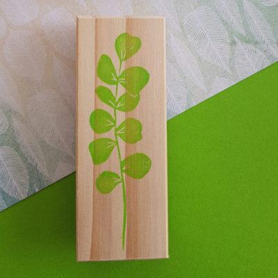 branche eucalyptus tampon gravé main